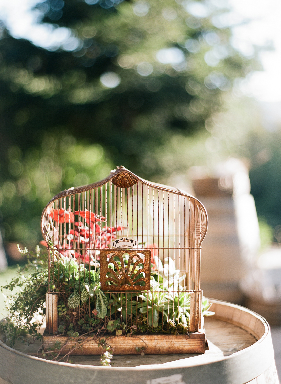 sylviegil-0199-sg-burgundy-calistoga-chocolate-fall-fcolors-gil-huppah-napa-outdoors-porsche-ranch-red-sylvie-wedding