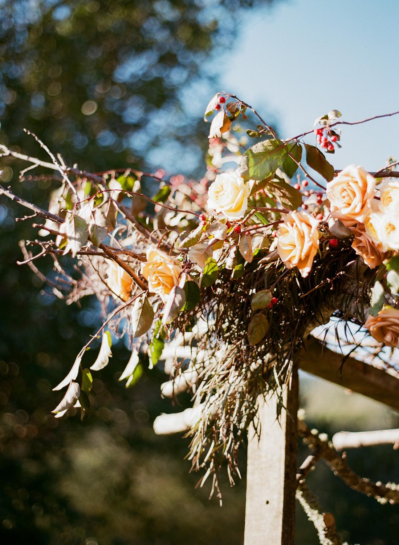 sylviegil-0200-sg-burgundy-calistoga-chocolate-fall-fcolors-gil-huppah-napa-outdoors-porsche-ranch-red-sylvie-wedding